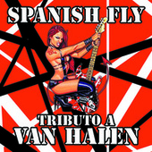 Tributo a Van Halen by Spanish Fly