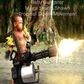 Baby Gangster de Mega Shatta Shawn