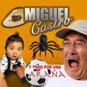 Todo por una Araña de Miguel Castro