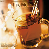 True Mellow 3 CD Set von Various Artists