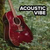 Acoustic Vibe de Various Artists
