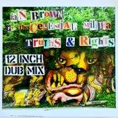 Truths & Rights (12 Inch Dub Mix) von Ian Brown