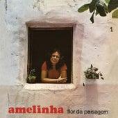 Flor Da Paisagem by Amelinha
