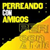 Perreando con amigos by Various Artists