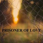Prisoner of Love von Heaven is Shining