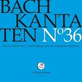 J.S. Bach: Cantatas, Vol. 36 (Live) by Orchester der J. S. Bach-Stiftung