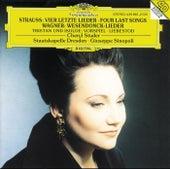 R. Strauss: Vier letzte Lieder / Wagner: Wesendonck-Lieder by Various Artists