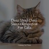 Deep Sleep Deep Sleep & Relaxation For Cats de Cat Music