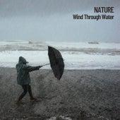 Nature: Wind Through Water de Nature Sounds (1)