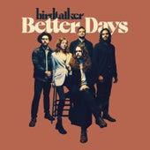 Better Days von Birdtalker