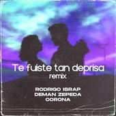 Te Fuiste Tan Deprisa (Remix) de Deman Zepeda