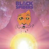 Give Em What They Want by Black Spiders