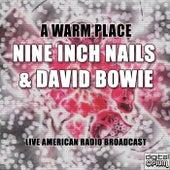 A Warm Place (Live) de Nine Inch Nails