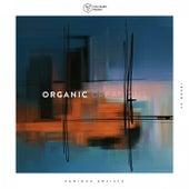 Organic Creations Issue 27 de Various Artists