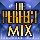 The Perfect Mix by Various Artists