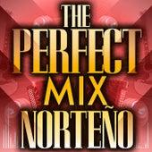 The Perfect Mix - Norteño de Various Artists