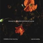 Formwela 6 by Esperanza Spalding