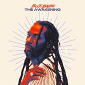 The Awakening by Buju Banton