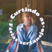 Curtindo as Férias Sertanejo de Various Artists
