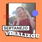 Sertanejo Viralizou von Various Artists