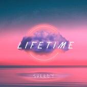Lifetime by Sheedy