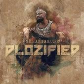 Dlozified by Mkhanyakude