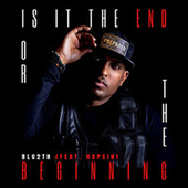 Is It The End or The Beginning by Blu2th