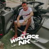 OLHA PRO DJ ( PASSINHO DO MAGRÃO ) von DJ Wallace NK