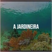 A Jardineira by Various Artists