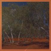 Lonesome Road von Various Artists