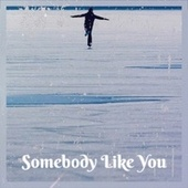 Somebody Like You by Various Artists
