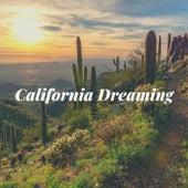 California Dreaming von Wilma Herz