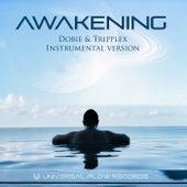 Awakening (Instrumental) by Dobie