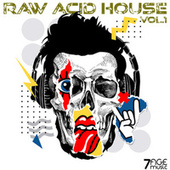 Raw Acid House, Vol. 1 by Various Artists