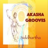 Akasha Grooves by Siddhartha