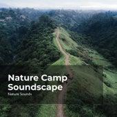 Nature Camp Soundscape von Nature Sounds (1)