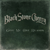 Give Me One Reason by Black Stone Cherry