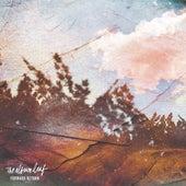 Forward / Return von The Album Leaf