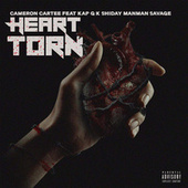 Heart Torn by Cameron Cartee
