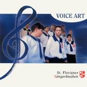 Voice Art by St. Florianer Sängerknaben