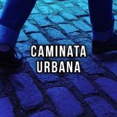 Caminata Urbana de Various Artists