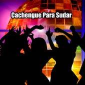 Cachengue Para Sudar by Various Artists