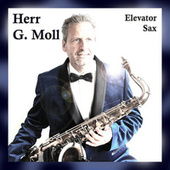 Elevator Sax (Instrumental version) de Herr G. Moll