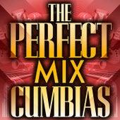 The Perfect Mix - Cumbias de Various Artists