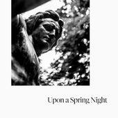 Upon a Spring Night von Bernadette Jameson