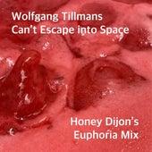 Can't Escape into Space (Honey Dijon's Euphoria Mix) by Wolfgang Tillmans