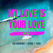 My Love Is Your Love (VIP Mix) de Yass