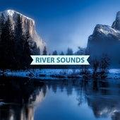 River Sounds & Rain by River Sounds