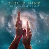 Liquid Mind: Musical Healthcare fra Liquid Mind