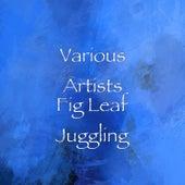 Fig Leaf Juggling de Various Artists